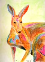 Color Roo by LAReal