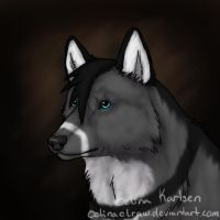 Go check her art!! by WolfWhisperer4Life