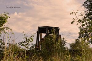 tractor by Libertad-E-Y