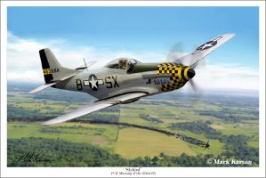 P-51 Mustang of the 353rd FG by markkarvon
