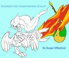 Reshiram Used Flamethrower? by saiyamewome