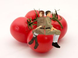 Tomatoes! by XEPICTACOSx