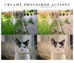 Photoshop Creamy Actions by lieveheersbeestje