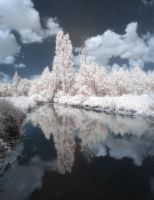 IR Mirror by wreck-photography