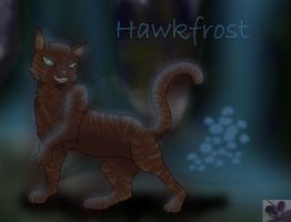 Hawkfrost in Place Of No Stars by ToxicStudios
