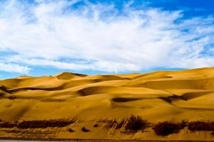 Imperial Sand Dunes by Bartonbo
