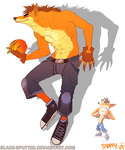 Crash Bandicoot! by Black-Spotted