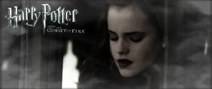 harry-potter-and-the-goblet-of-fire 2005 Hermi by Tokimemota