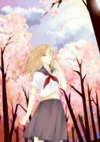 Under The Cherry Blossoms by kidakat