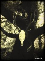 Guardian Of The Forest by Estruda