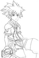 Sora Kingdom Hearts by SakuraChan99