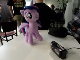 Twilight Likes Camera by Juu50x