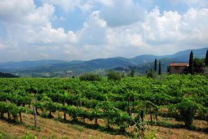 Tuscany VI by Wilithin