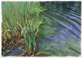 Grass And Water by h-i-l-e-x