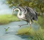 Heron and frog. by Avgust-art