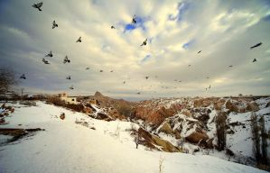 Cappadocia under the snow - VI : Pigeons by Suppi-lu-liuma
