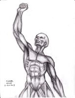 Anatomy Sketch 2-24-2013 by myconius