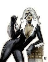 Black Cat by MasonEasley