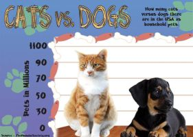 Information Design Graph: Cats vs. Dogs by ellyabby