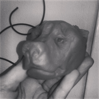 Pit-Bull Play doe sculpture by TheSodaSmuggler