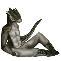 I chillin Like an argonian by Allixi