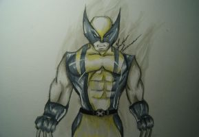 Wolverine by Draw4fun2