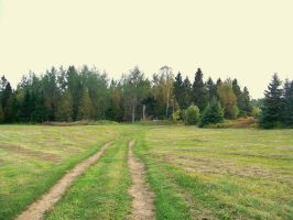 Path Stock 8 by philippeL-stock