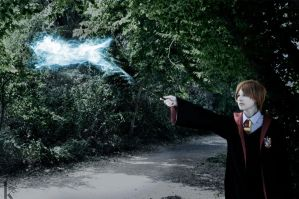 Expecto Patronum by TheMaraudersProngs