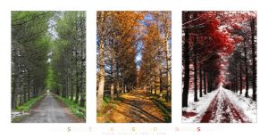 Three Seasons by Frider