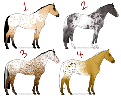 Free Adoptables - Horses 21 (Appy Pack) by carlmoon