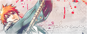 Bleach signature by akinuy