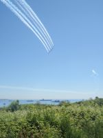Snowbirds fly by DISC-Photography