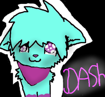 Dash :D by Epe0411