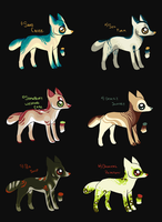Lil Adopts:. Closed by KingDirty