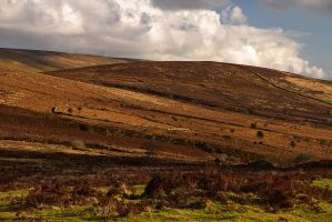 Dramatic Dartmoor by parallel-pam