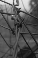 Part of the Whole Raindrop by pricegotphoto