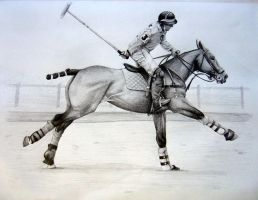 Polo in the Park by SamsBee