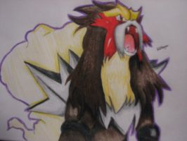 Entei by TheGaboefects