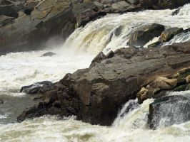 Great Falls of the Potomac 38 by Dracoart-Stock