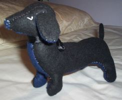 sausage dog - angled view by something-i-am-not