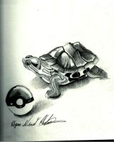 Squirtle Squirtle by Quan-Art