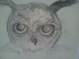 Owl from my dreams by saxoncote