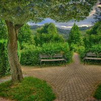The Bench Premade Background by VIRGOLINEDANCER1