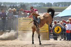 Taupo Rodeo 154 by Sooty-Bunnie