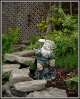 A gnome from gnome in Trenton, Ontario by squareprismish