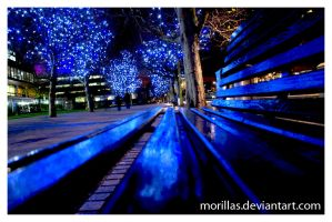 Jubilee Trees by Morillas