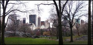 Central Park by Kuiosikle