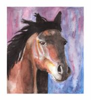 Horse 38 by Paintwick