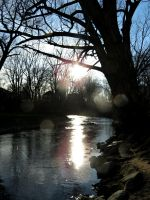 Lens Flare and the River by Michies-Photographyy