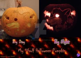-Silvolf Halloween Pumpkin- by Silvolf